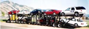rausch-transport1