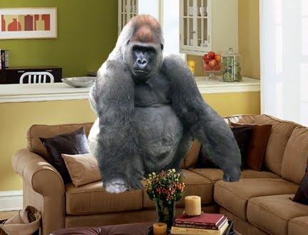 central dispatch 800 lb gorilla